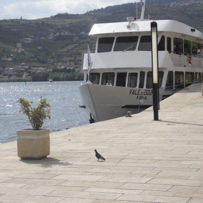 douro-cruise