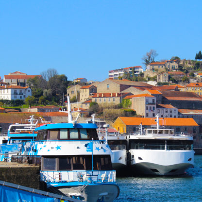 1 day cruise in Douro river