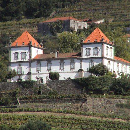 Programas no Douro