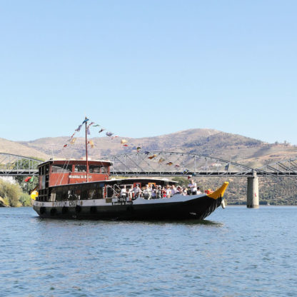 douro-cruise-half-day