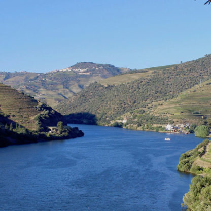 half-day-douro-cruise