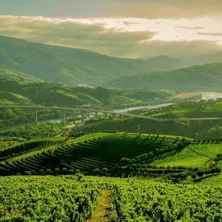 Programa de 3 dias no Vale do Douro