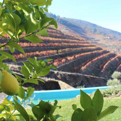 3 days in Douro Valley