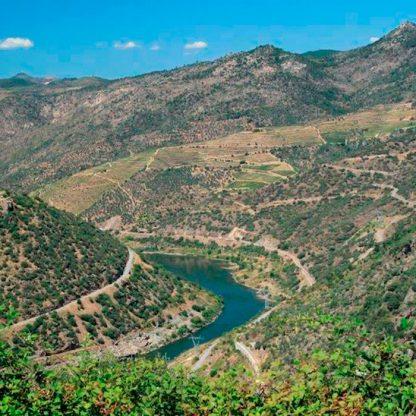 douro-valley-hotel-ship