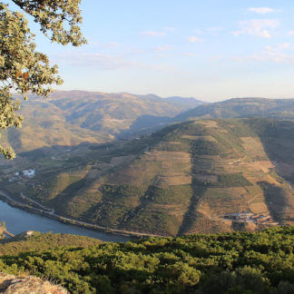Programa in Douro Valley