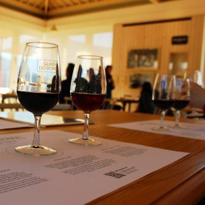prova-de-vinho-cruzeiro-no-douro