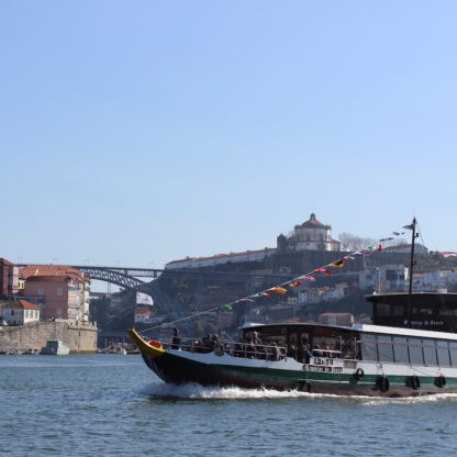 cruise-by-the-bridges-and-foz-in-douro