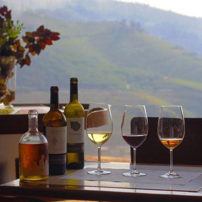 luxury-program-in-douro